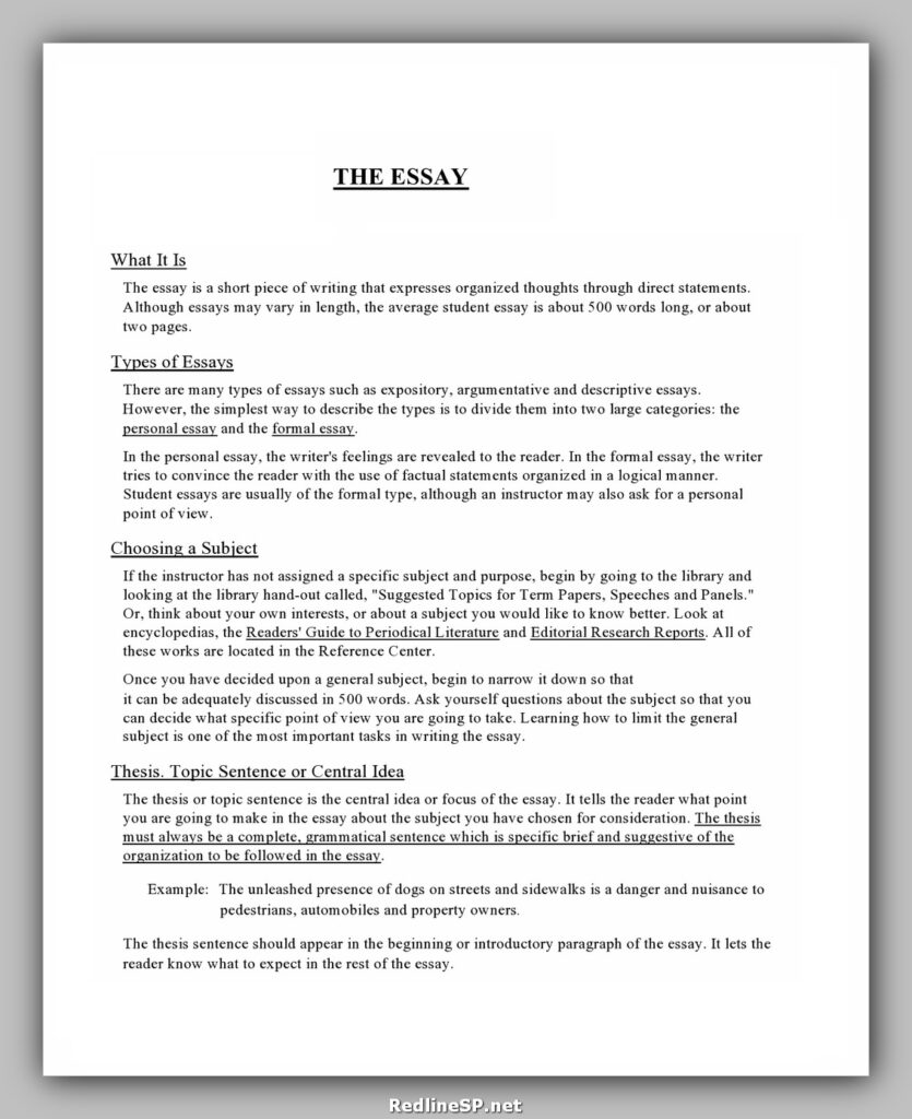 College Essay Template 16