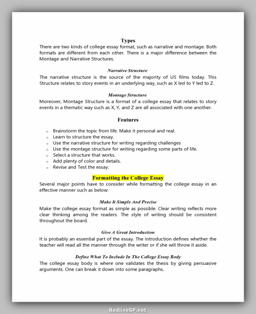 College Essay Template 17