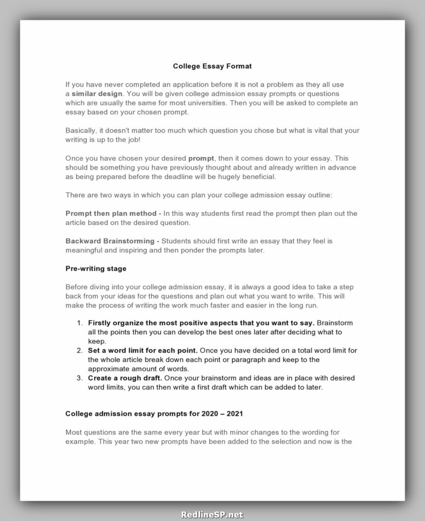 College Essay Template 18