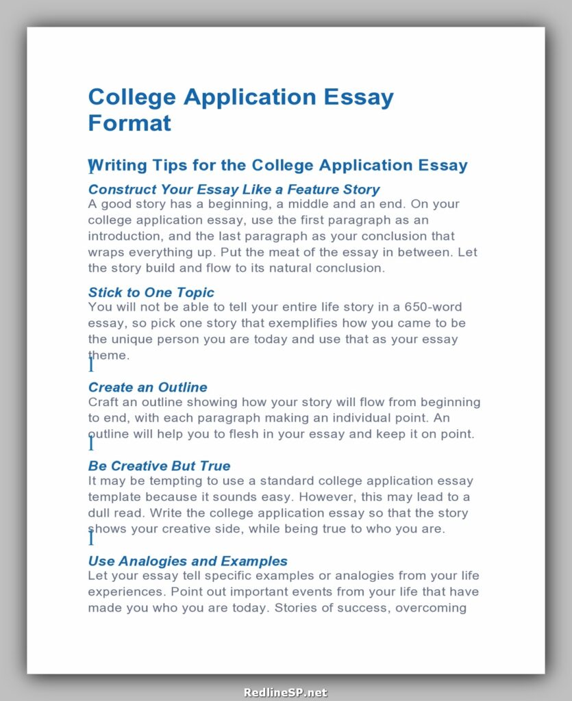 College Essay Template 23
