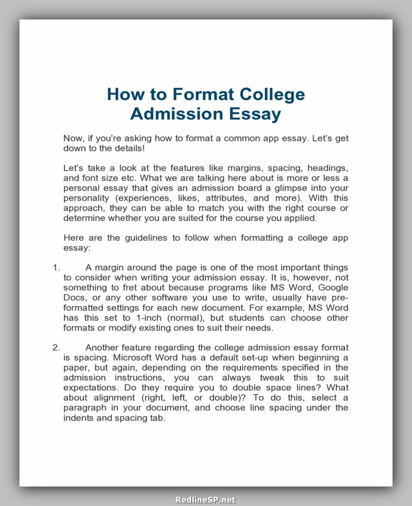 College Essay Template 24