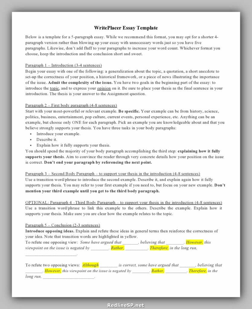 College Essay Template 27