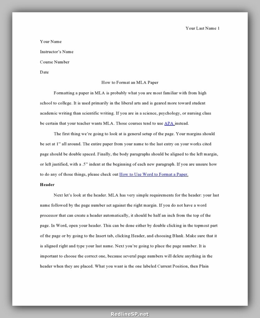 College Essay Template 28