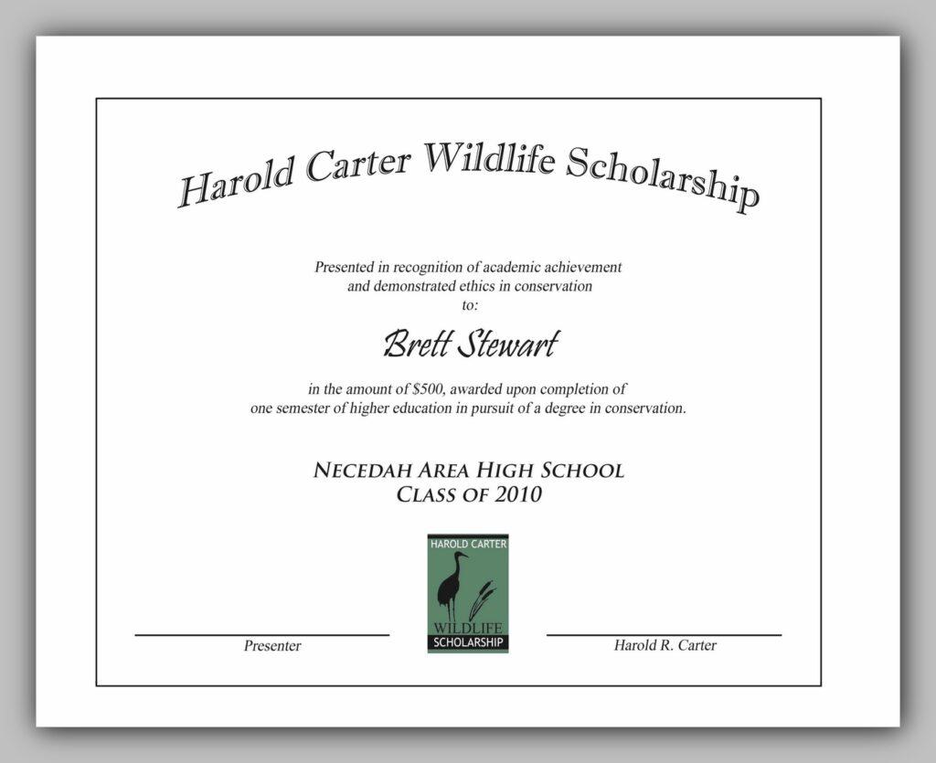 award certificate template 12