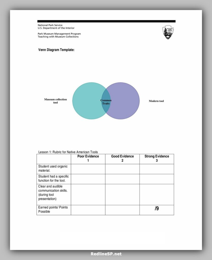 Modern Venn Diagram Template