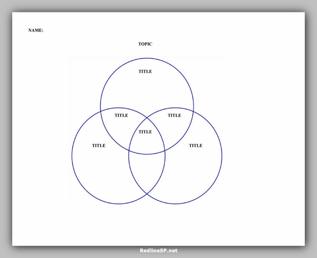Venn Diagram Character Template PDF