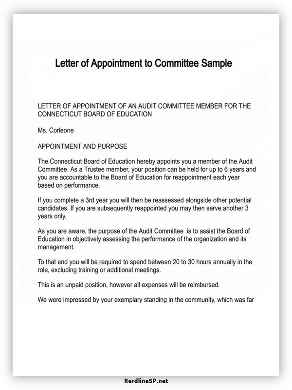 Appointment Letter Template 10