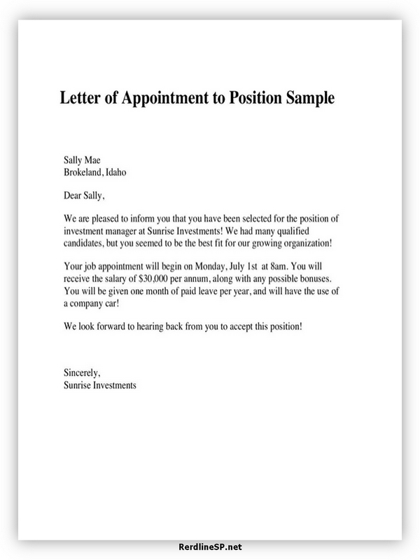 Appointment Letter Template 11