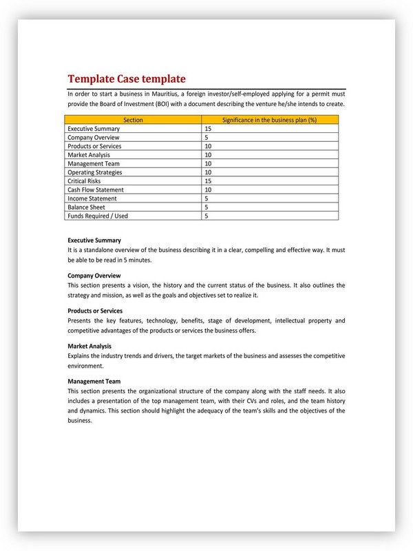 Business Case Template 17