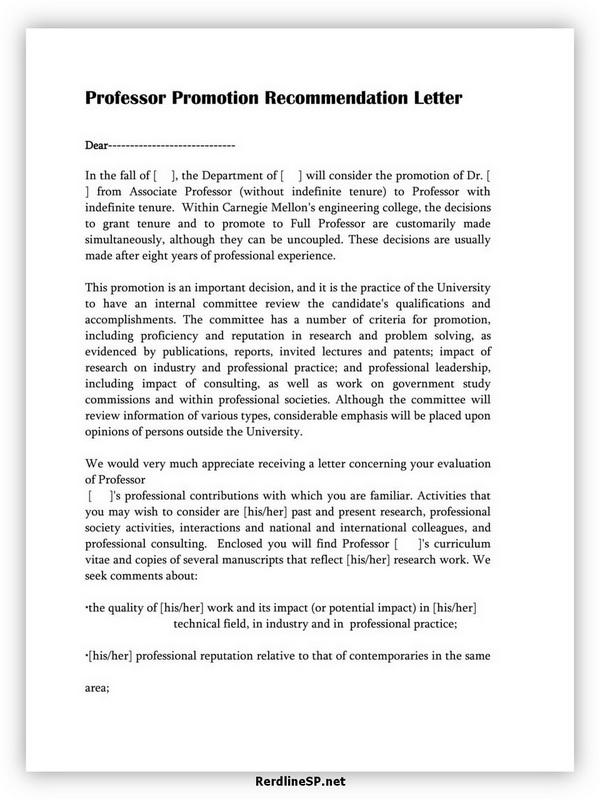Professor Promotion Recommendation Letter 06